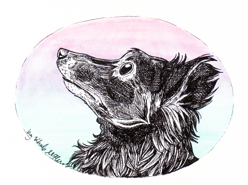 A pet portrait for a new friend
